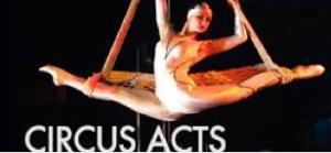 circus acts at circus circus